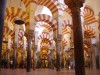 Córdoba Controversy: Historic Mosque-Cathedral  Mired In Cultural Dispute
